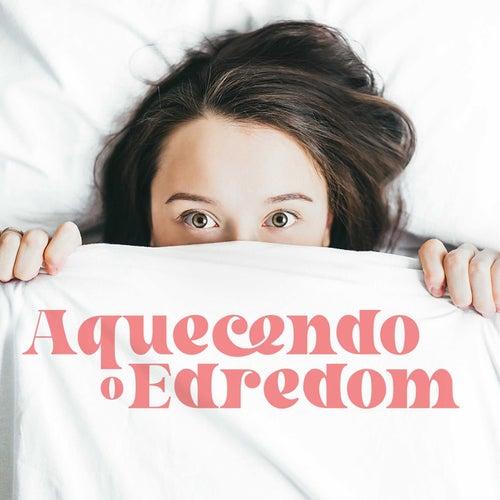 Aquecendo o Edredom by Various Artists