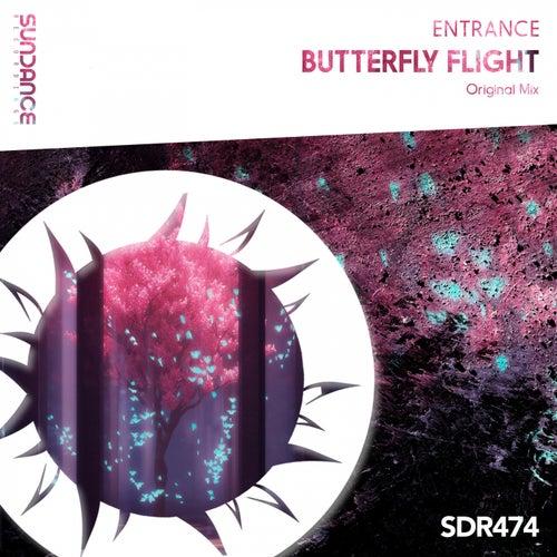 Butterfly Flight by Entrance