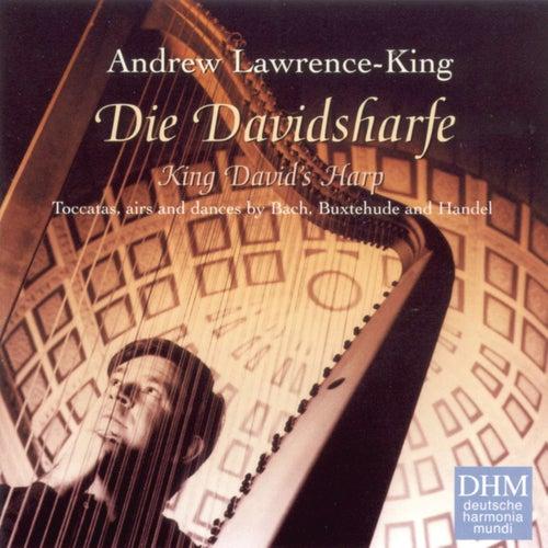 King David's Harp de Andrew Lawrence-King