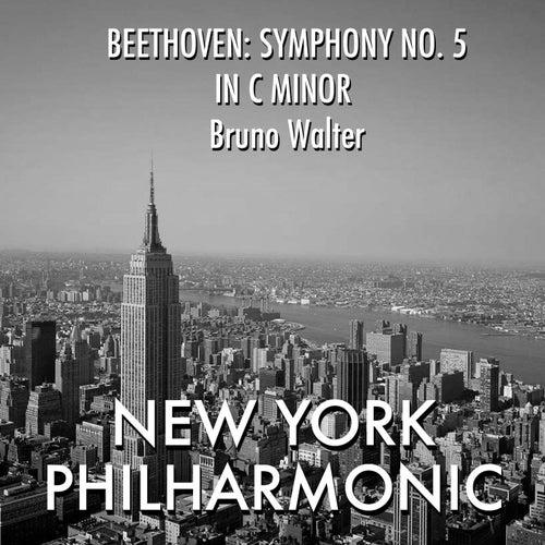 Beethoven: Symphony No. 5 in C minor fra Bruno Walter