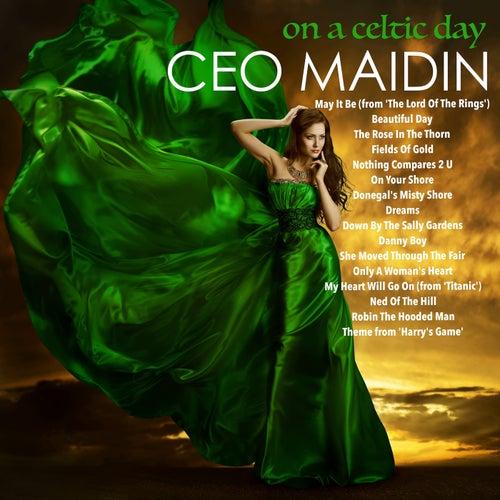 On a Celtic Day von Ceo Maidin