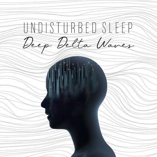 Undisturbed Sleep: Deep Delta Waves, Binaural Beats for Headache Relief & Vibrational Healing Relaxation by Headache Relief Unit