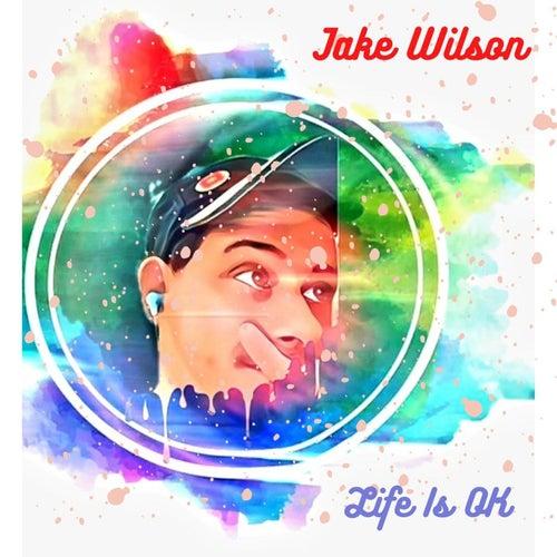 Life Is Ok von Jake Wilson