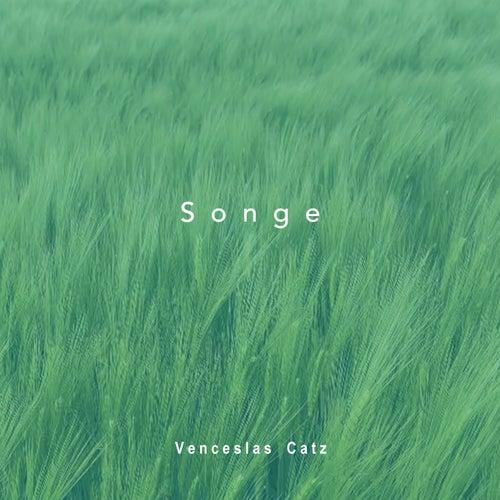 Songe by Venceslas Catz