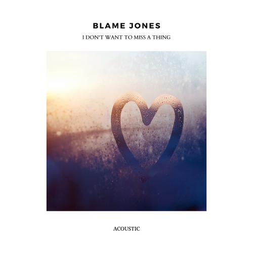 I Don't Want to Miss a Thing (Acoustic) fra Blame Jones