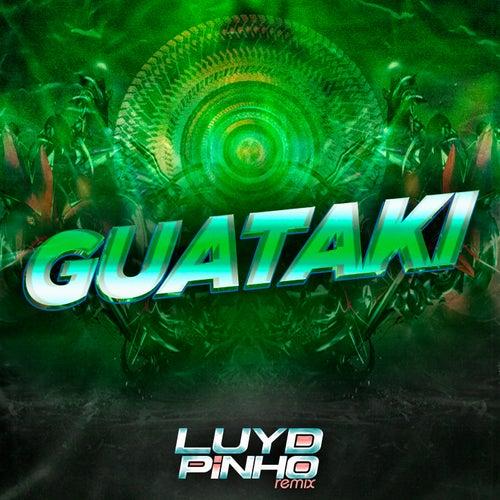 Guataki fra Luyd Pinho