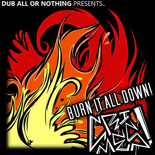 Burn It All Down by Crimes