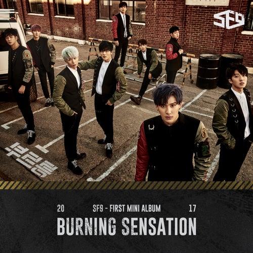 SF9 First Mini Album [Burning Sensation] de Sf9