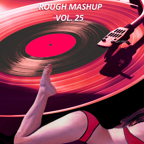 Rough Mashup, Vol. 25 (Extended Instrumental and Drum Mix) von Work in Work