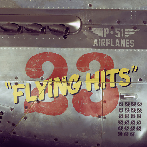 23 Flying Hits von P-51 Airplanes