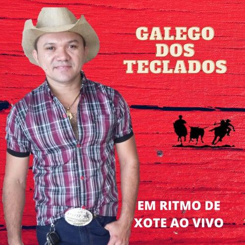 Em Ritmo de Xote (Cover Ao vivo) de Galego dos Teclados