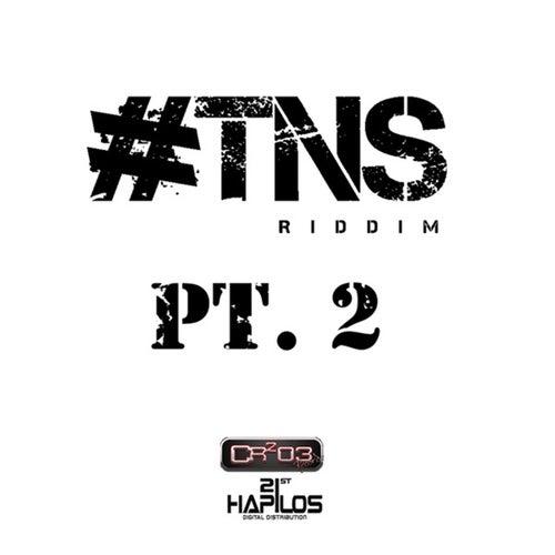 #TNS Riddim Pt.2 de Various Artists