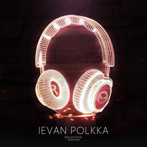 Ievan Polkka (9D Audio) von Shake Music
