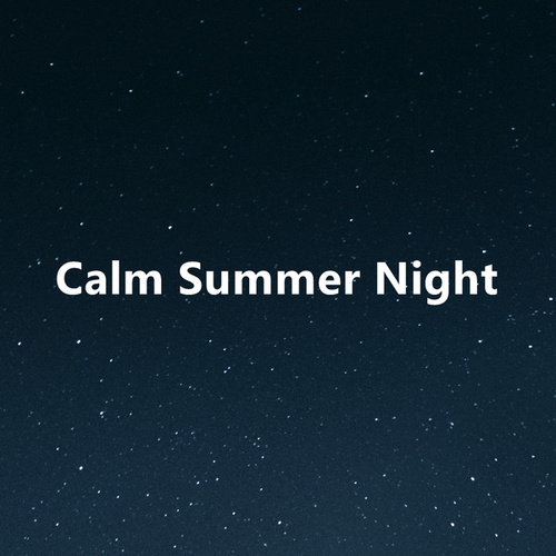 Calm Summer Night by Various Artists