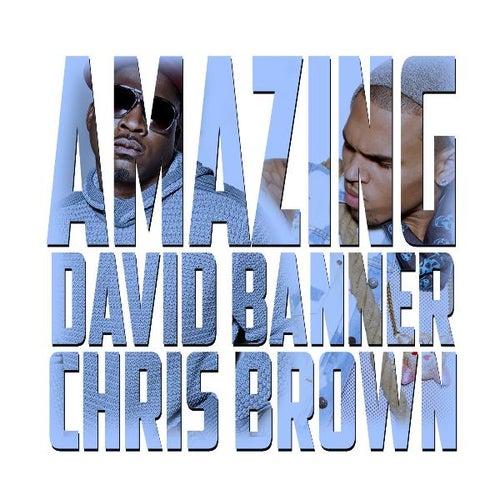 Amazing (feat. Chris Brown) - Single de David Banner