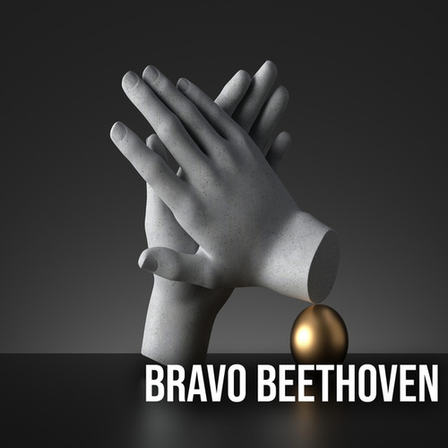 Bravo Beethoven by Various Artists