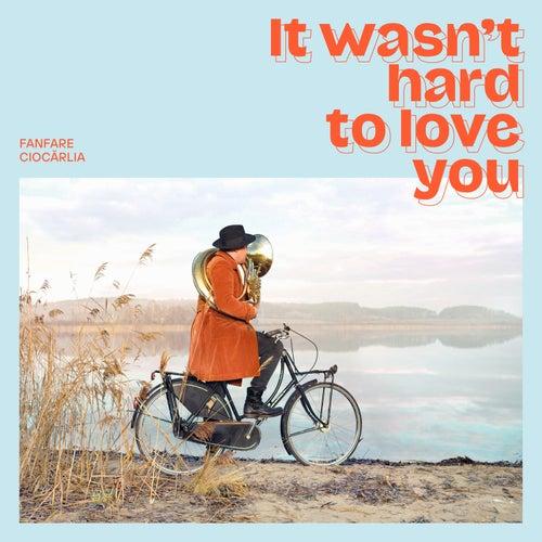 It Wasn't Hard to Love You de Fanfare Ciocarlia