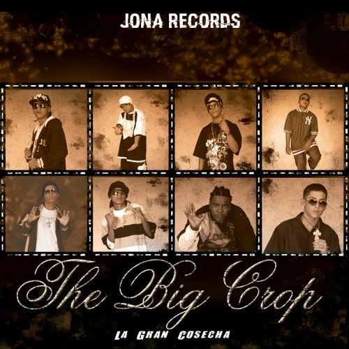 The Big Crop - La Gran Cosecha by Jona