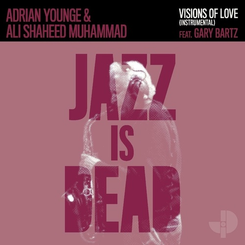 Visions of Love (Instrumental) by Adrian Younge