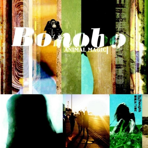 Animal Magic de Bonobo