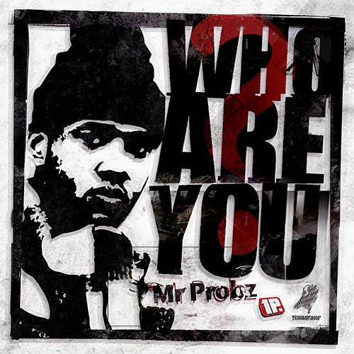 Who Are You? - Single von Mr. Probz