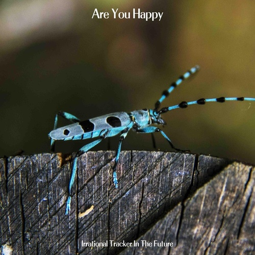 Are You Happy by Irrational Tracker In The Future