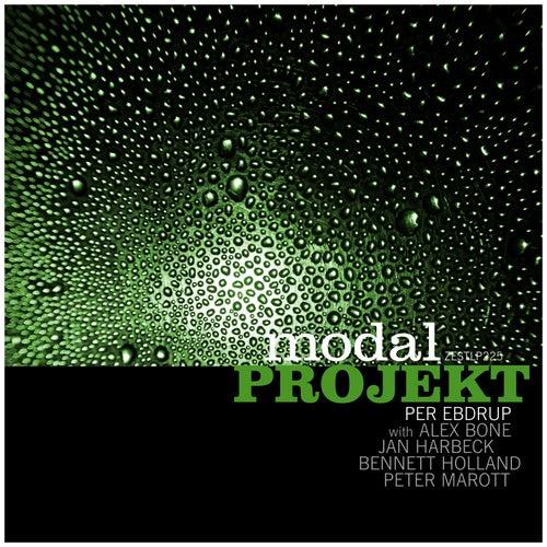 Electronic Organic by modal PROJEKT