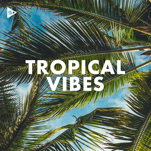 Tropical Vibes de Various Artists