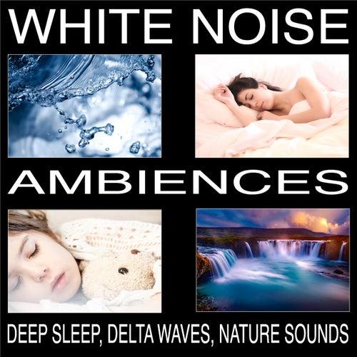 White Noise Ambiences, Delta Waves, Deep Sleep, Nature Sounds von Pat Barnes