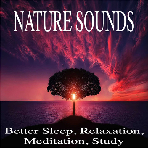 Nature Sounds for Better Sleep, Relaxation, Meditation, Study von Pat Barnes