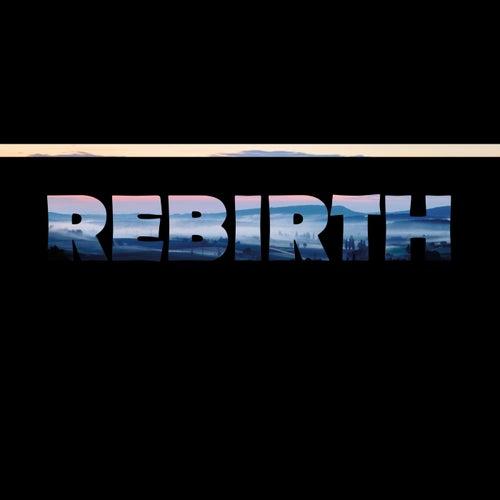 Rebirth von Acprjct