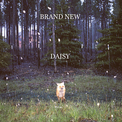 Daisy by Brand New