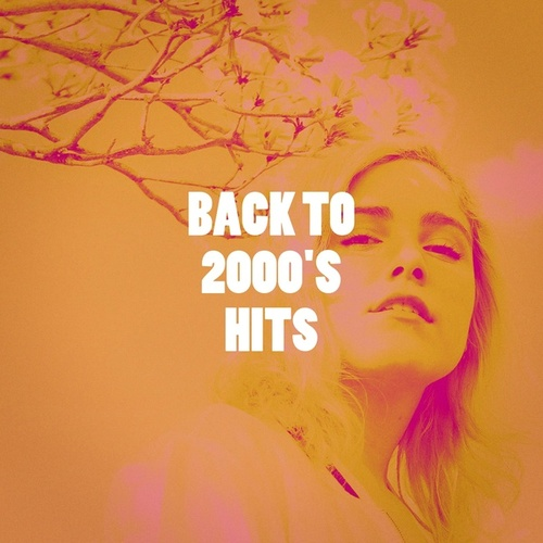 Back to 2000's Hits by The Summer Hits Band