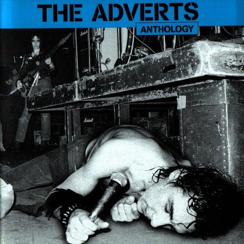 Anthology von The Adverts