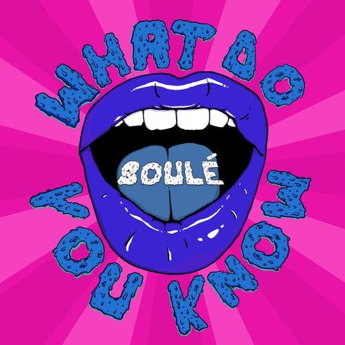 What Do You Know de Soulé