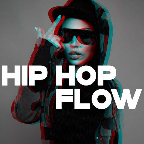 Hip Hop Flow by Various Artists
