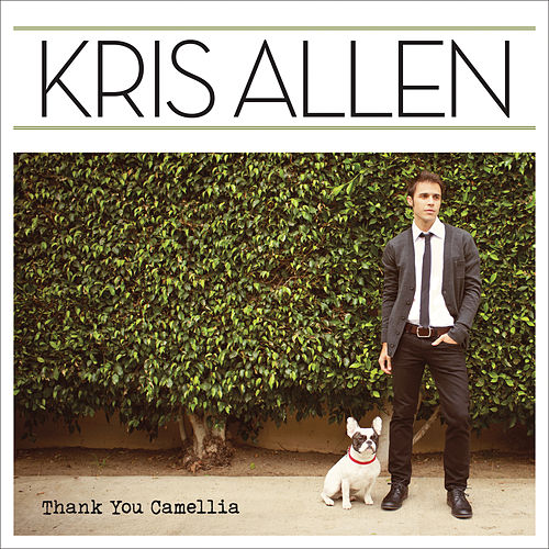 Thank You Camellia de Kris Allen