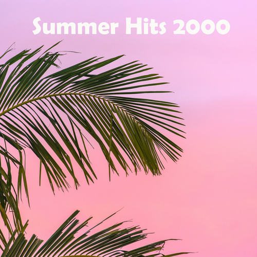 Summer Hits 2000 by Various Artists