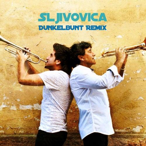 Sljivocica ([dunkelbunt] Remixes) de Boban i Marko Markovic Orkestar