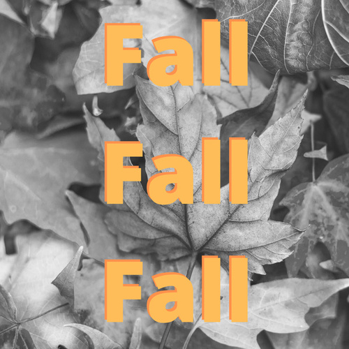 Fall Fall Fall by Various Artists