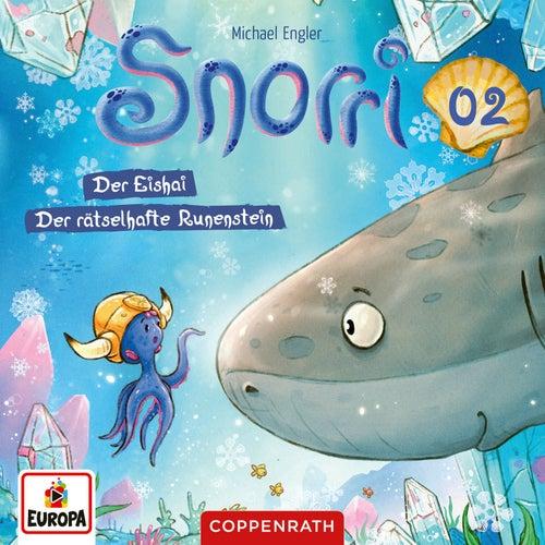 Folge 2: Der Eishai/Der rätselhafte Runenstein von Snorri