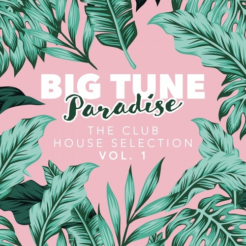 Big Tune Paradise - The Club House Selection, Vol. 1 by Various Artists