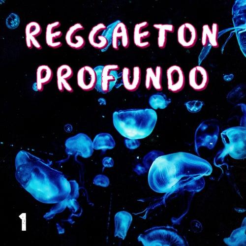 Reggaeton Profundo Vol. 1 de Various Artists