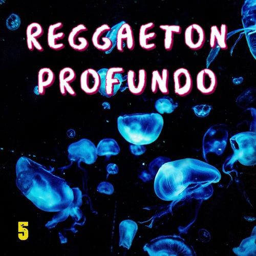 Reggaeton Profundo Vol. 5 de Various Artists