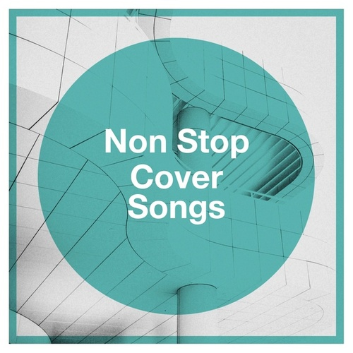Non Stop Cover Songs von Various Artists