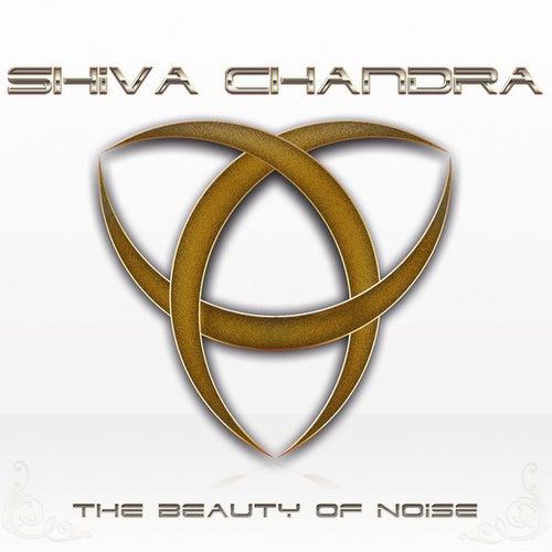 The Beauty of Noise by Shiva Chandra