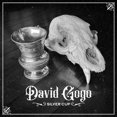 Silver Cup von David Gogo