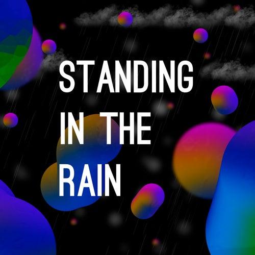 Standing in the Rain de Tumolli