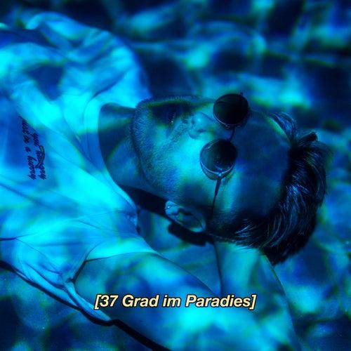 37 Grad im Paradies by Clueso