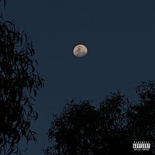 MR Moon by Nebula